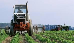 Family business farm